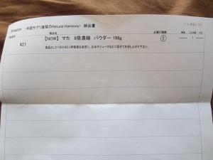 IMG_1838_mini