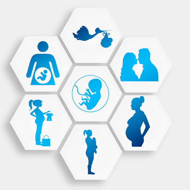 pregnancy-1749858_640