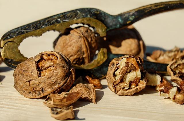 walnut-1751661_640