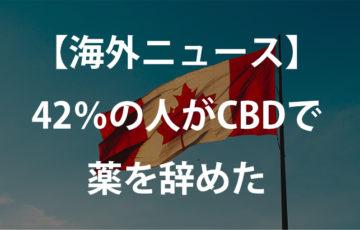 cbdの海外ニュース