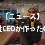 アメリカ人女性CEOとCBD
